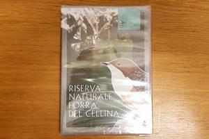 banner-dvd-forra
