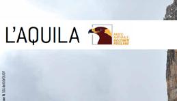 banner_small_aquila_dicembr