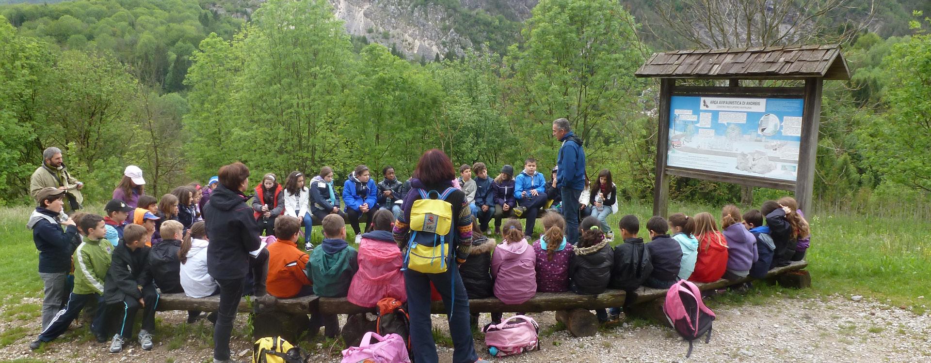 Parco Naturale Dolomiti Friulane